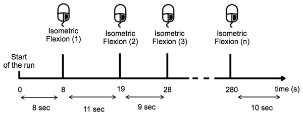 Timing scheme for each run.