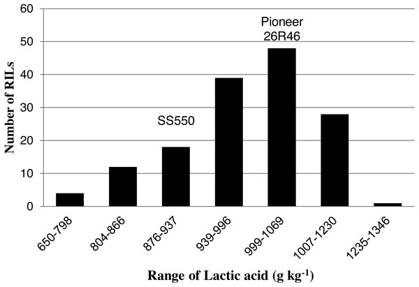 Distribution of average lactic acid SRC values for wheat recombinant inbred lines and their parents.