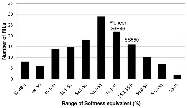 Distribution of average softness equivalent values for wheat recombinant inbred lines and their parents.