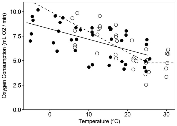 Oxygen consumption by pygmy rabbits (Brachylagus idahoensis) at different temperatures during summer (open circles, dashed line) and winter (filled circles, solid line).