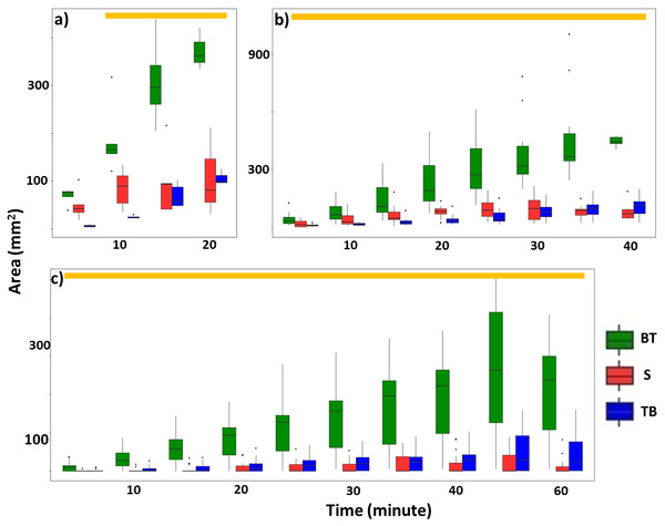 Total area (mm2) of mud tubes repaired by termites at 5-min intervals following removal of an ∼5 cm section of the mud tube, for trials in which the damaged mud tube was completely repaired within 22 min (six videos) (A), between 24 and 40 min (15 videos) (B), and more than 42 min (nine videos) (C).