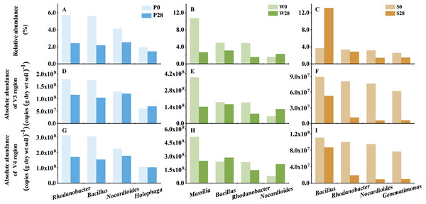 The representative genera of Treatments P, W, and S.