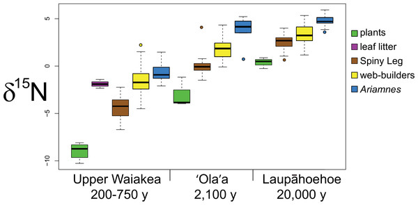 Boxplots showing nitrogen isotope ratios of functional groups across sites.