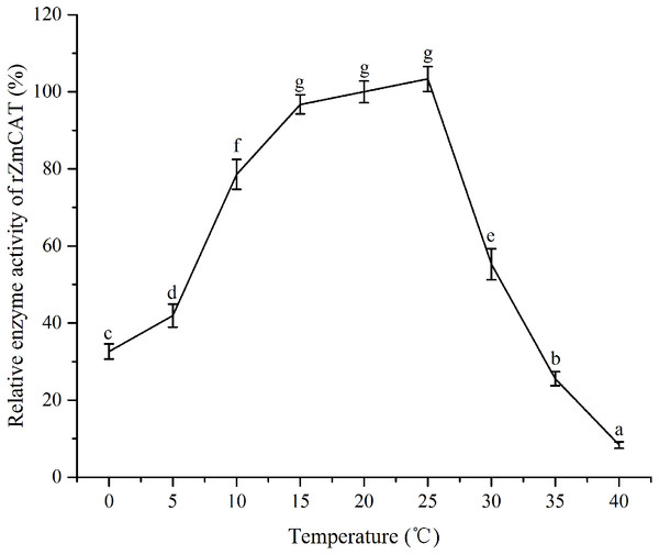 The effects of temperature stress on the enzymatic activity of recombinant ZmCAT protein.