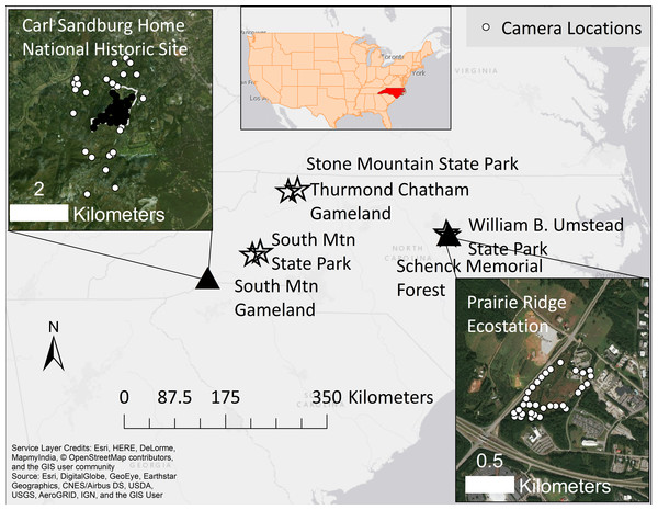 A map of our two study sites (triangles) and comparative sites (stars) in North Carolina, United States.