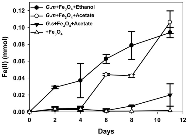 Quantities of ferrous iron in cultures of Geobacter metallireducens (G.m) and Geobacter sulfurreducens (G.s) in the presence of magnetite with ethanol and acetate as the substrates.