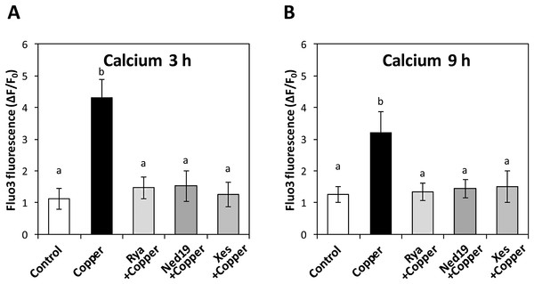 Endoplasmic reticulum calcium channels involved with intracellular calcium release in response to copper excess.