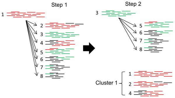 Clustering algorithm used by PlasmidSeeker.