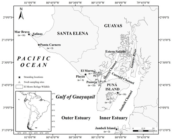 Map of the Gulf of Guayaquil showing sample locations.