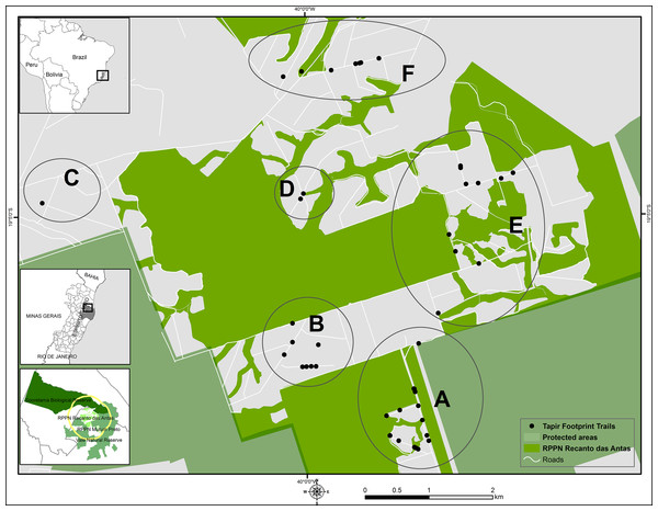 Survey sites for lowland tapir footprints.