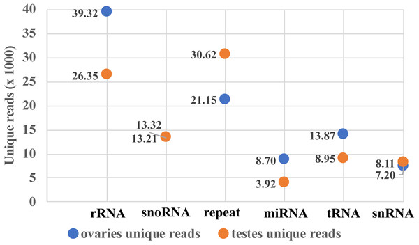 Mappable unique reads about small RNA classification.