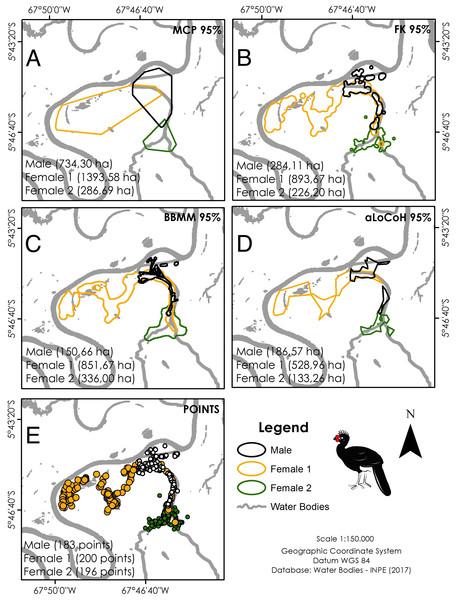 Home range size of the three monitored individuals of C. globulosa in the Médio Juruá, Amazonas, Brazil, using multiple estimators.