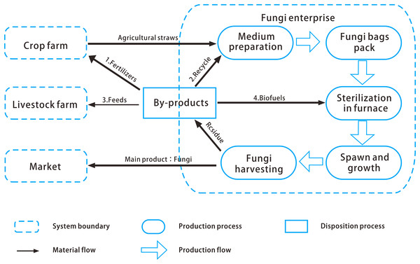 Edible fungi production system of the pilot plant.