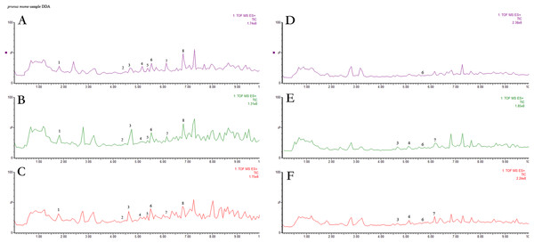 UPLC chromatograms of anthocyanin extracts captured at 520 nm for anthocyanin of six cultivars.