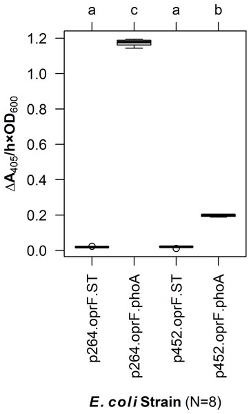 OprF as a surface display anchor in E. coli.
