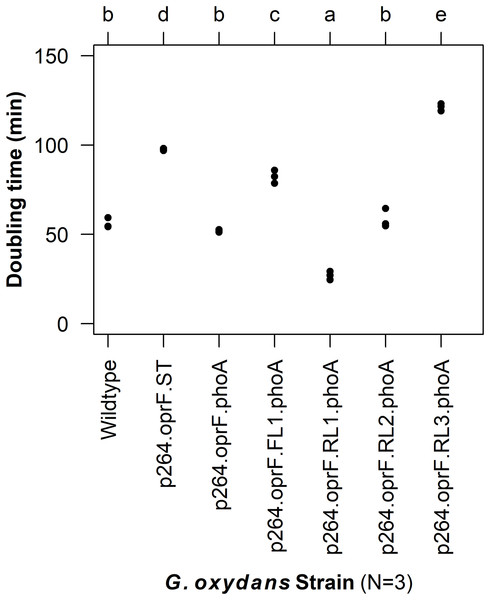 Doubling time of G. oxydans strains.