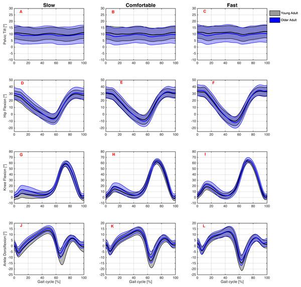 Angular kinematics during overground walking.
