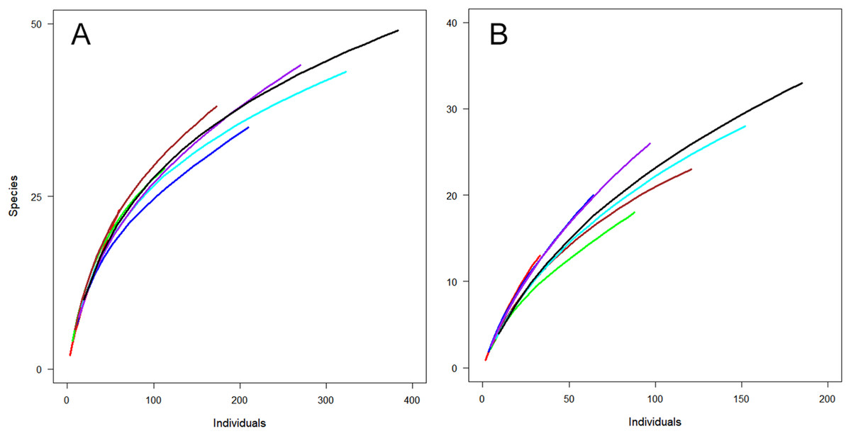 Variation in the diversity and richness of parasitoid wasps