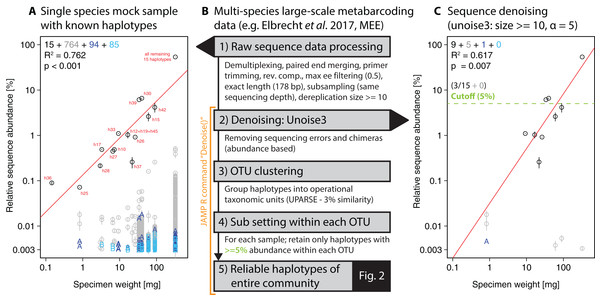 Overview of DNA metabarcoding data of a single-species mock sample containing specimens with 15 distinct haplotypes amplified with the fwh1 primer set (black circles), with red numbers above each circle showing the original 31 haplotypes using the full 658 bp barcoding region (Elbrecht & Leese, 2015; Vamos, Elbrecht & Leese, 2017).
