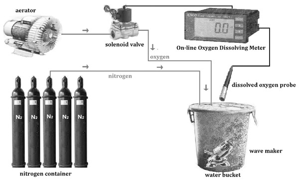 Schematic diagram of the dissolved oxygen control system.