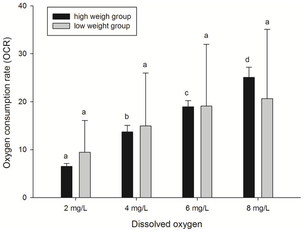 Oxygen consumption rates of A. japonicus at different dissolved oxygen levels.