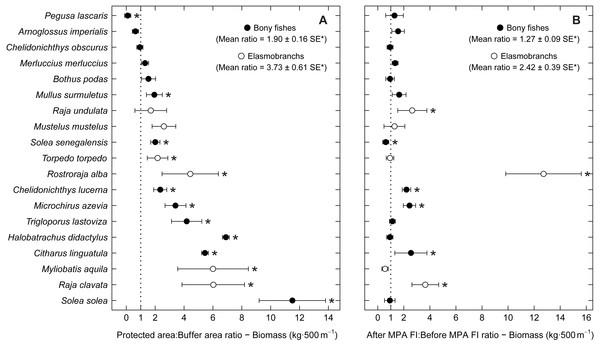 Biomass response ratio per species.