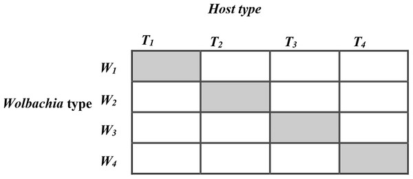 The 4 × 4 factorial design for horizontal transfer of Wolbachia in Host Trichogramma kaykai.