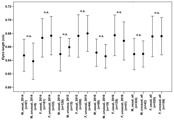 Elytra length (Mean ± SD) of males and females of usual and unusual individuals of P.oblongopunctatus in the years of study and all years together.