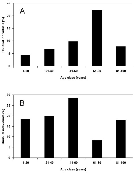 Percentage share of unusual individuals of P. oblongopunctatus on the total of individuals collected in forest stands of different age classes in the forest range Martew.