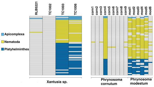 Identifiable metagenomic sequences between congeneric hosts.