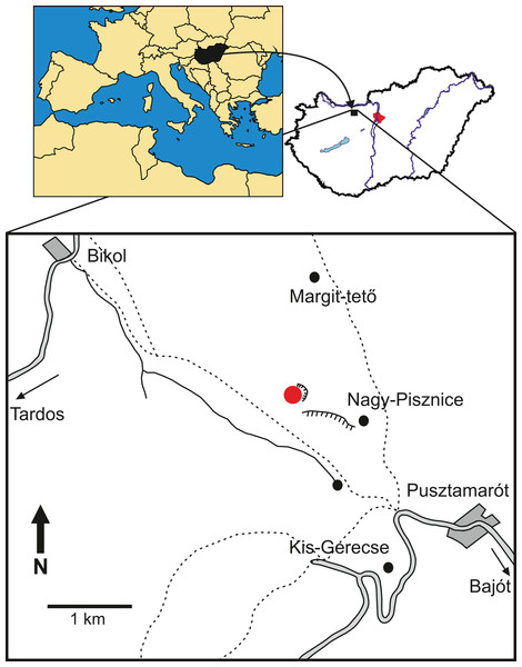 Locality map of the new thalattosuchian crocodyliform, Magyarosuchus fitosi gen. et sp. nov. from the Toarcian of the Gerecse Mountains, Hungary.