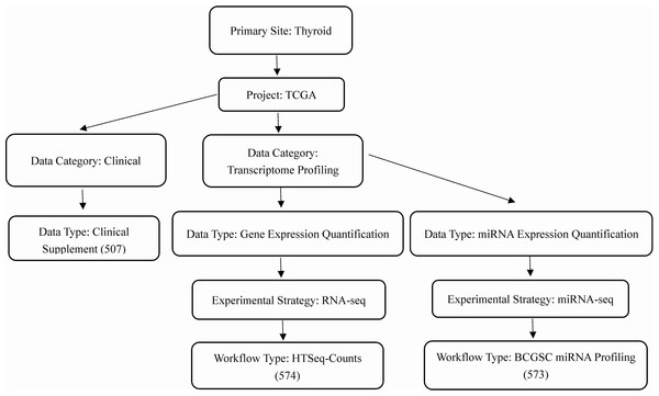 Workflow of the data selection.