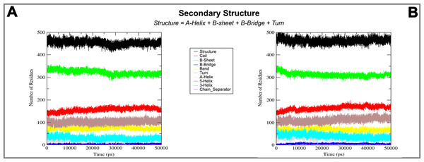 Secondary structure during MD simulations.