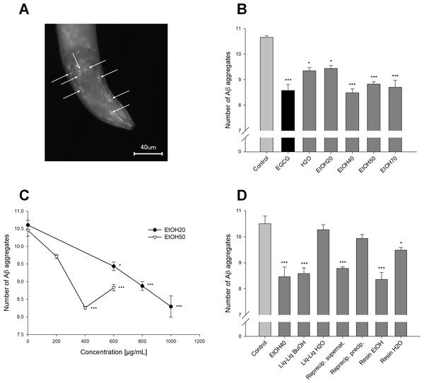 Effect of Sideritis scardica on Aβ aggregation in C. elegans.