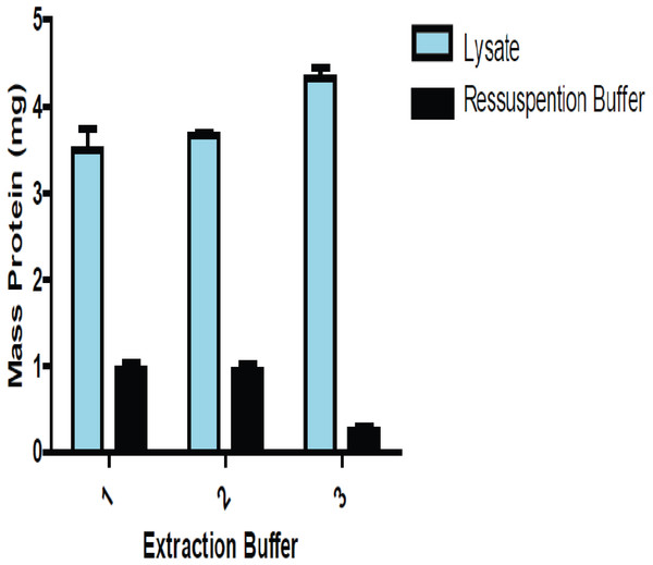 Comparison of the amount of total protein present in the lysate and the resolubilizated proteins (precipitate proteins resuspended) using lung tissue.