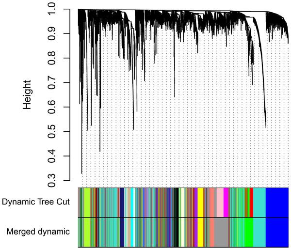 Clustering dendrogram of genes.