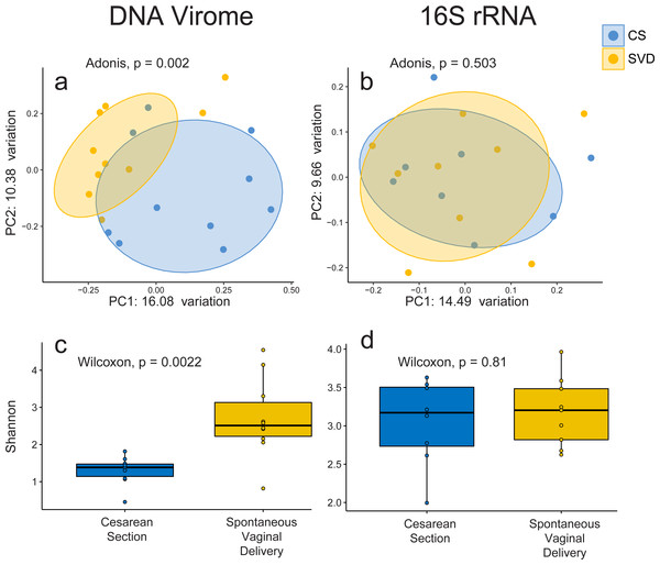 Alpha and beta diversity measures for virome and 16S rRNA sequence data in the INFANTMET cohort.