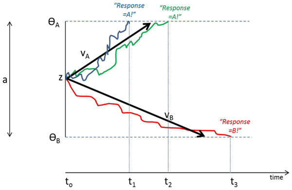 Schematic of Drift Diffusion Model (DDM) of decision-making.