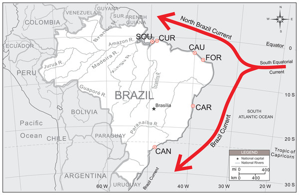 Sampling localities of U. cordatus populations surveyed along the Brazilian coast.