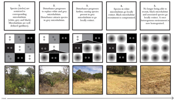 Short-range endemics get caught in ecological and landscape traps.