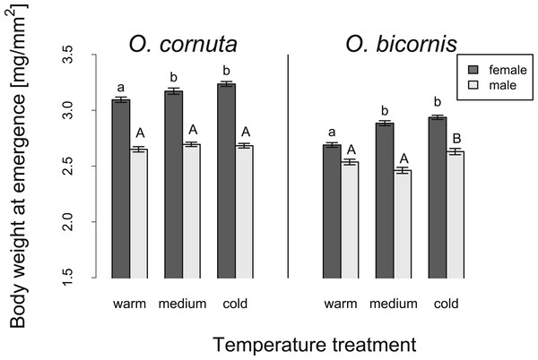 Influence of temperature on the body weight at emergence of O. cornuta and O. bicornis males and females.