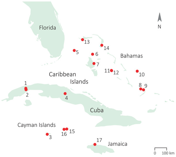Sampling locations of the populations of study across the Caribbean.