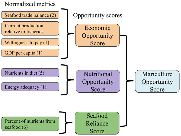 Schematic of mariculture opportunity score calculation for each nation.