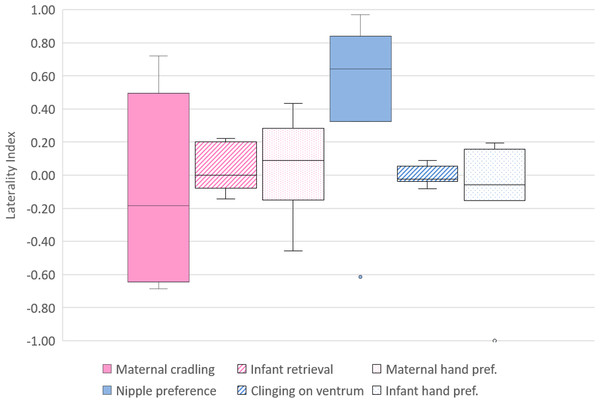 Lateral biases in the behaviour of mother and infant Barbary macaques.