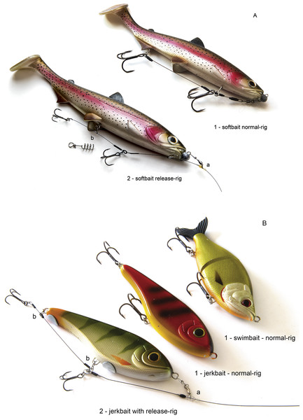 Lures and rigs used in the study.