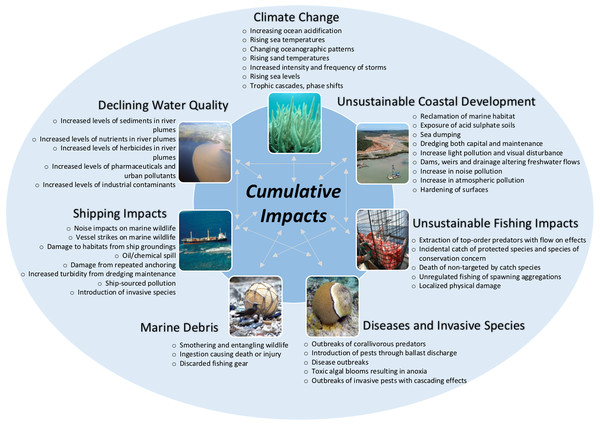 Cumulative impacts on the Great Barrier Reef.
