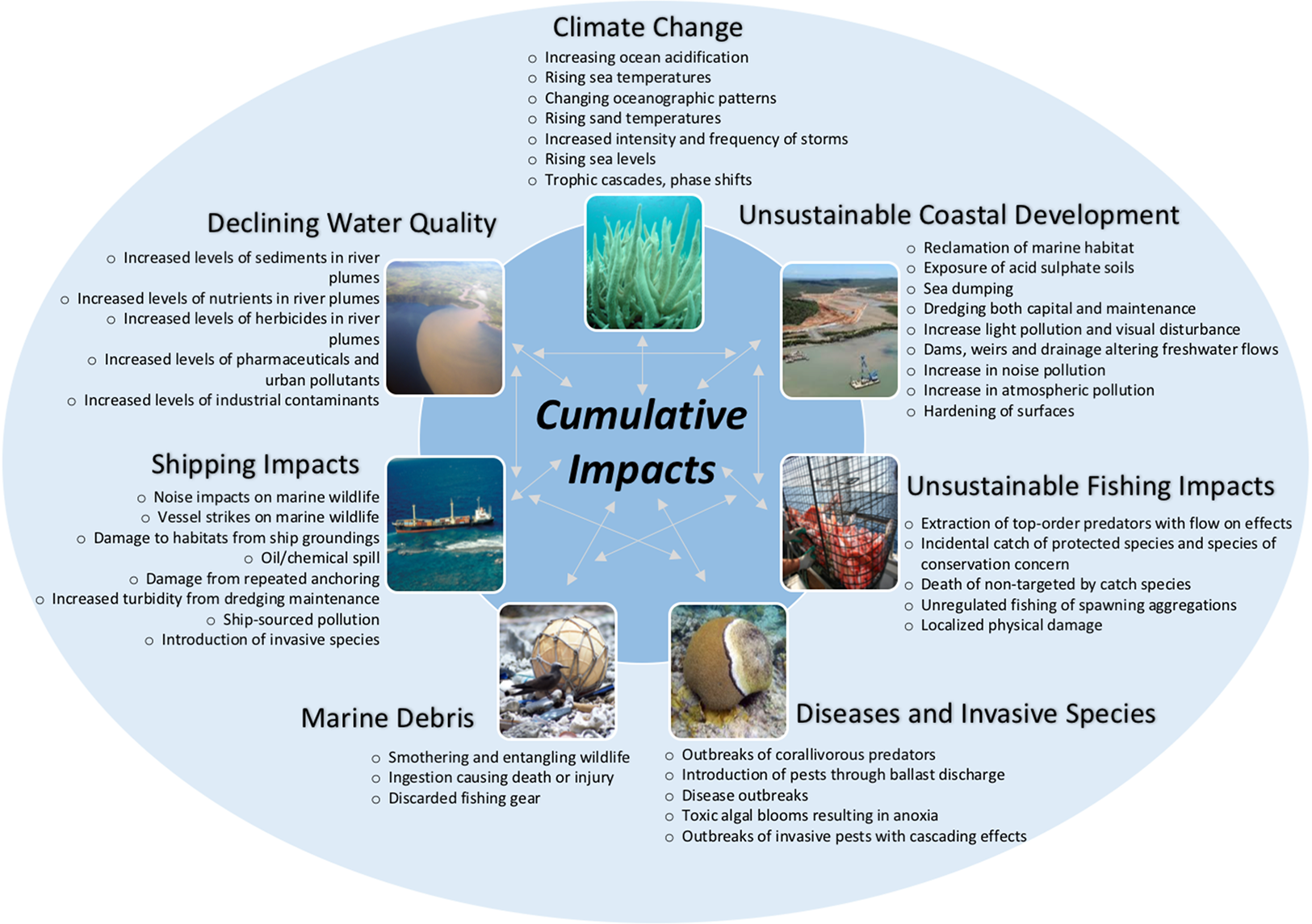 Biodiversity Of The Great Barrier Reef How Adequately Is It