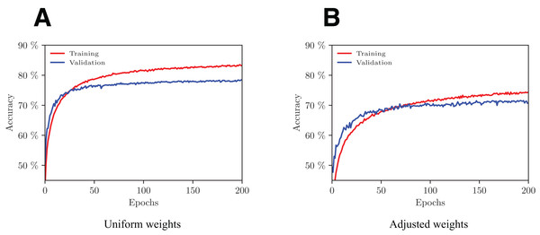 Evolution of the network's performance during the training process with uniform (A) and adjusted (B) weights.