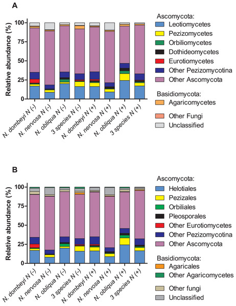 Plant species identity, plant species mixture, and N addition effects on fungal groups in the litter layer of an old growth temperate forest in Patagonia.