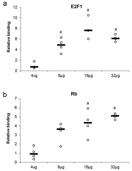 Effect of protein concentration on the relative binding of (A) E2F1 and (B) Rb in liver from control T. scripta elegans.